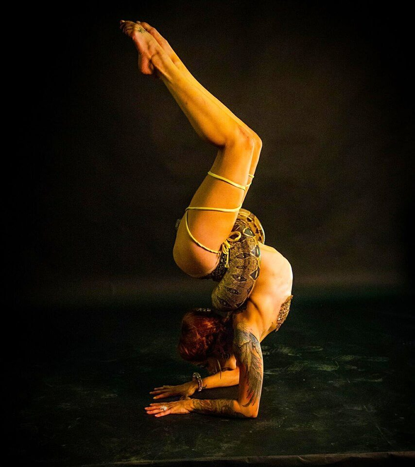 Tina Phoenix Snake Charming Contortionist