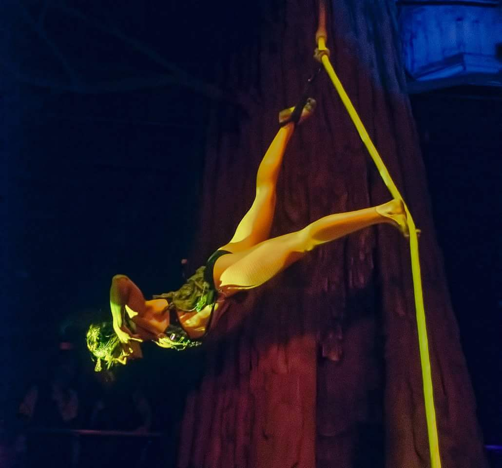 Aerialist Performer Tina Phoenix Spanish Web Rope